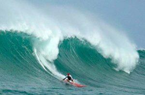 Surfer Steve